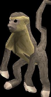 Monkey (grey and beige) pet