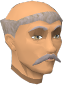 File:Ulsquire Shauncy chathead.png