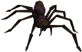 Purple spider.png