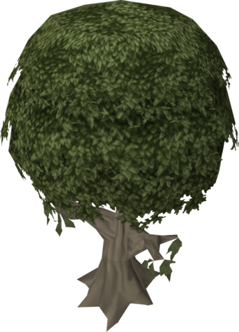 File:Mastic tree.png