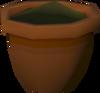 Oak seedling (w) detail