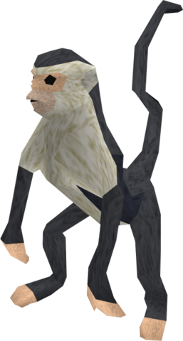 File:Monkey (black and white) pet.png