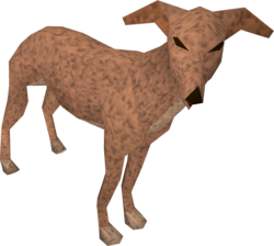 Greyhound (light brown) pet.png