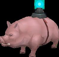 Pig (pet) prayer