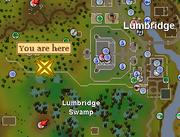 Evil Tree (Lumbridge Swamp) location
