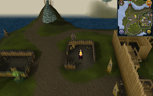Scan clue Fremennik Isles Neitiznot between town gates and Summoning obelisk