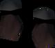 Roseblood gloves detail