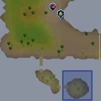 Fairy ring DIP location