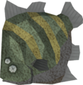 Raw giant flatfish (Sinkholes) detail.png