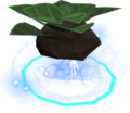 Divine herb patch I detail.png