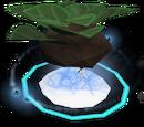 Divine herb patch I