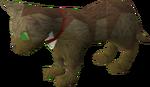 Pet kitten (brown) pet