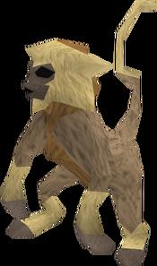 Baby monkey (tan and beige) pet