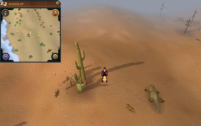 File:Scan clue Kharidian Desert north-west of desert lizards.png