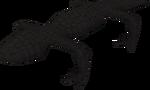 Black Salamander Hunter