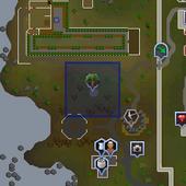Crystal tree (Dark Wizards' Tower) location