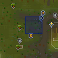 Shooting Star (Tree Gnome Stronghold) location.png