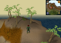 Compass clue Karamja east of Pothole Dungeon entrance.png