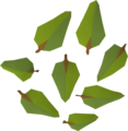 Leaves (yew) detail.png