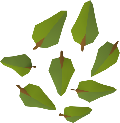 File:Leaves (yew) detail.png