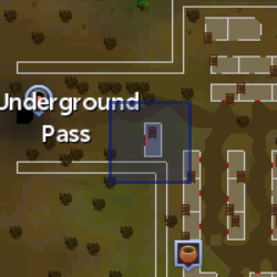 File:Dark mage (Underground Pass) location.png