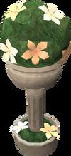 Spherical evergreen