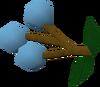 Grapes of Saradomin detail