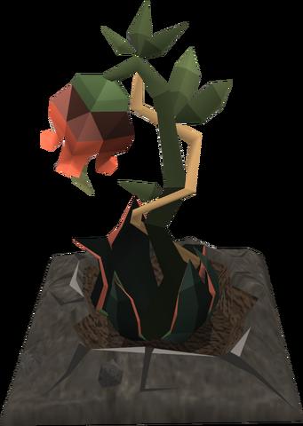 File:Rosebloodplant.png