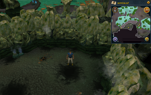 Scan clue Lumbridge Swamp Caves north-west of Tears of Guthix Cavern entrance