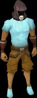 File:Wildstalker helmet (tier 1) equipped.png