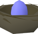 Bird's nest (blue egg)