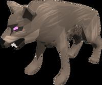 Cave Wolf Matriach