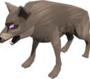 Cave Wolf Matriarch