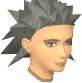 File:Female hair wildspike.png