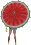 Watermelon parasol equipped