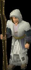 Mercenary mage
