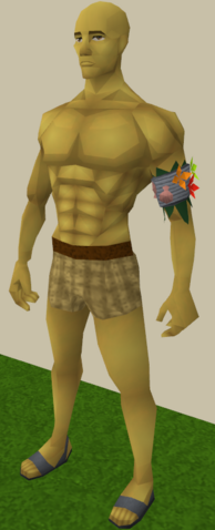 File:Armadyl yellow skin equipped.png