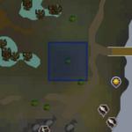 Devotion Sprite (Lumbridge Swamp) location
