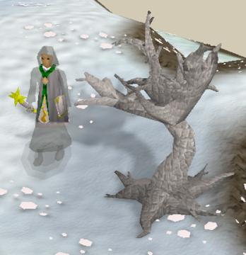 File:White tree.jpg
