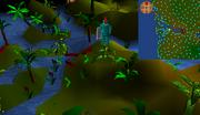 Jungle Vine location