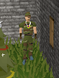 File:Camosuit.png