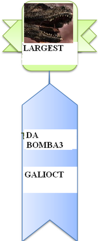 File:Most largest.PNG