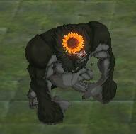 File:Female Gorilla.jpg