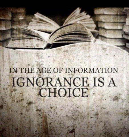 File:Age of Information.png