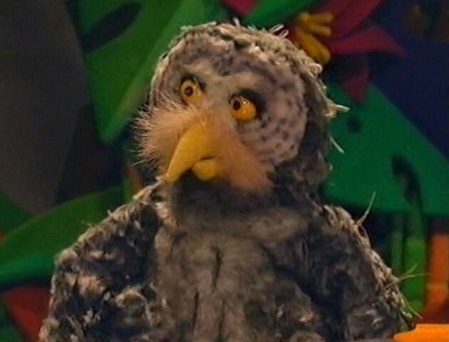 File:Timothy the Owl.jpg