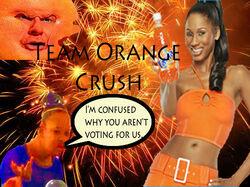 Team orange crush flag