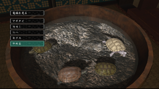 File:Turtle tub - zoo.png