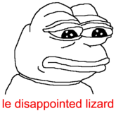 Le disappointed lizard