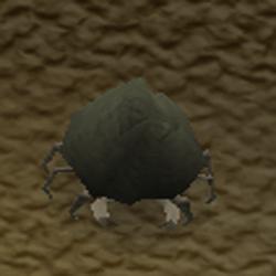 File:Rock Crab.PNG