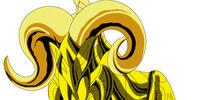 Aries Cloth